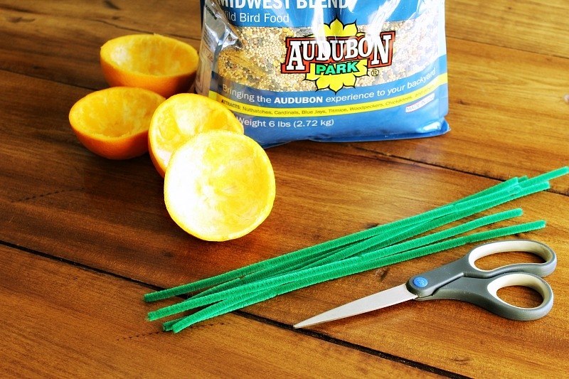 DIY Citrus Bird Feeder